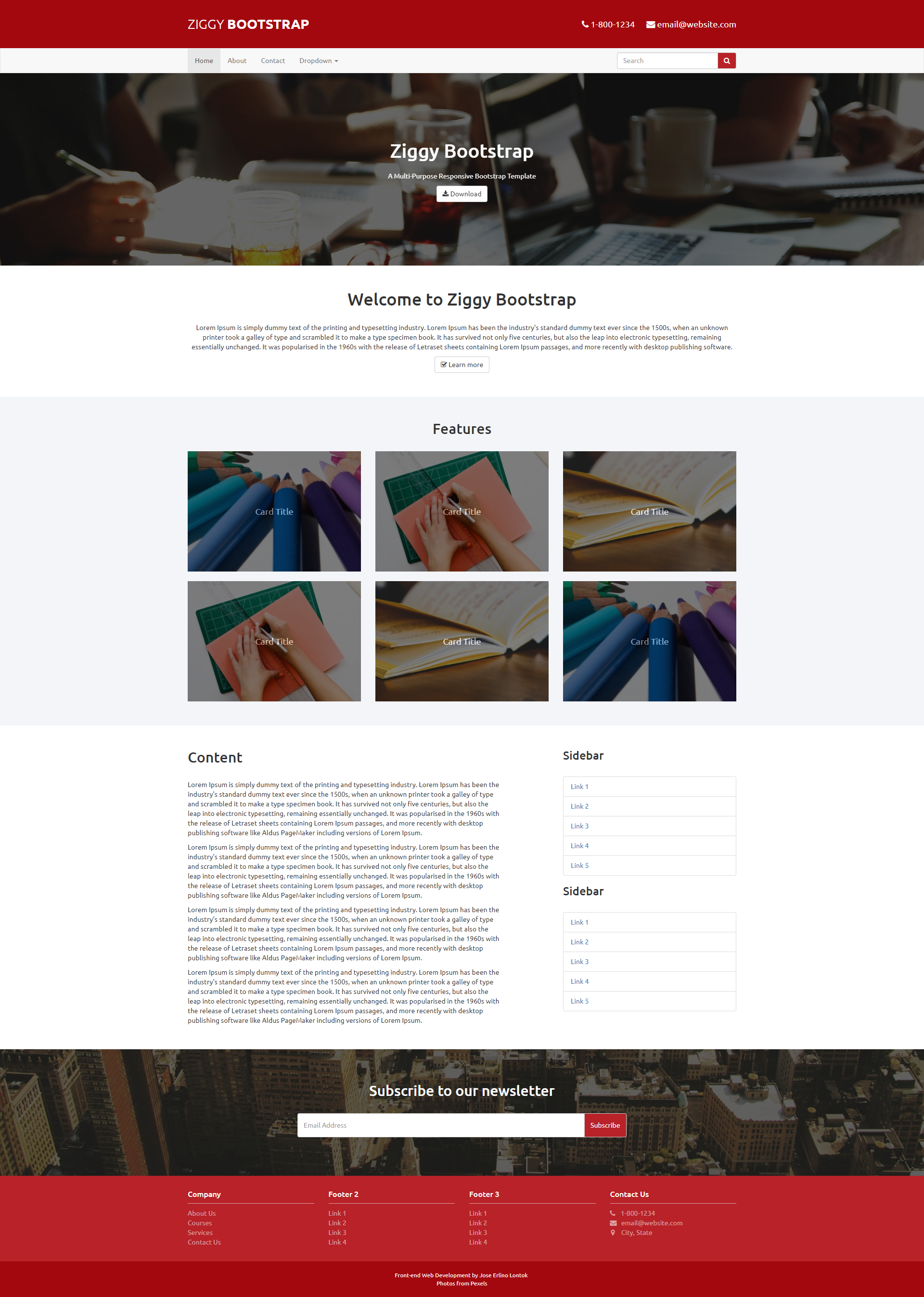 Ziggy Bootstrap - A Multi-Purpose Reponsive Bootstrap Template.