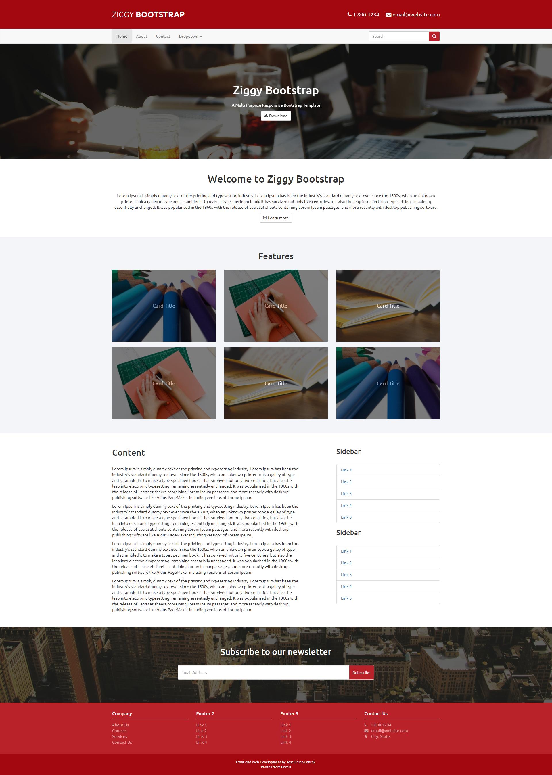 Ziggy Bootstrap - A Multi-Purpose Reponsive Bootstrap Template.